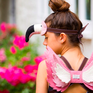 Flamingo rooliasu